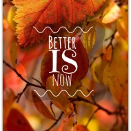 Better IS now
