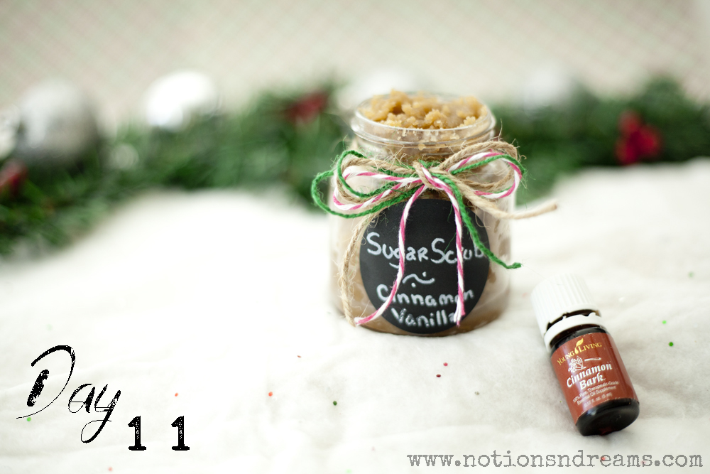 day11_cinnamon-vanilla-sugar-scrub_class